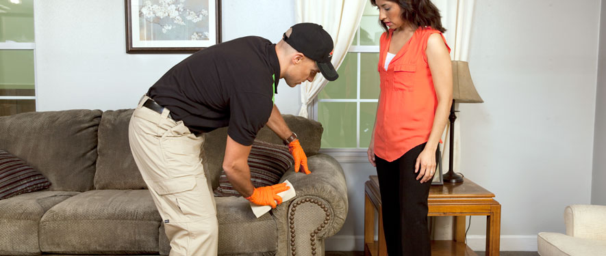 Douglasville, GA carpet upholstery cleaning